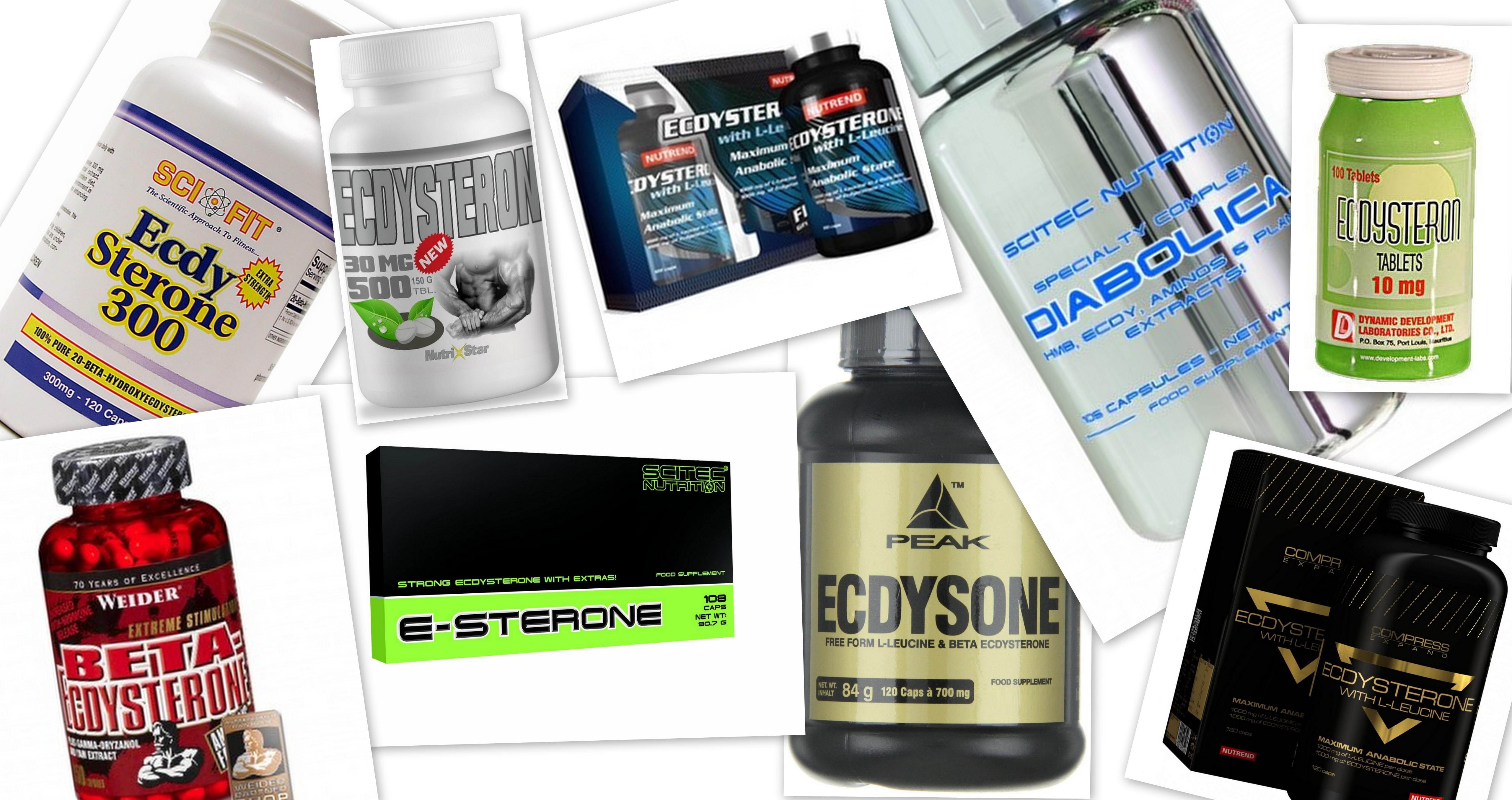 Ecdysteron_Supplement