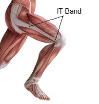 it-band-adduktoren