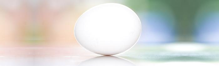 f nf gr nde wieso eier gesund sind. Black Bedroom Furniture Sets. Home Design Ideas