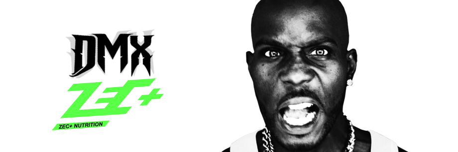 zecplus-dmx-video-song-track