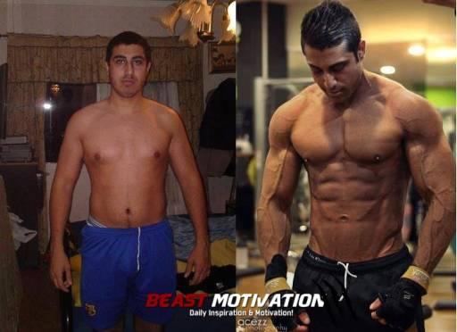 arayz-transformation