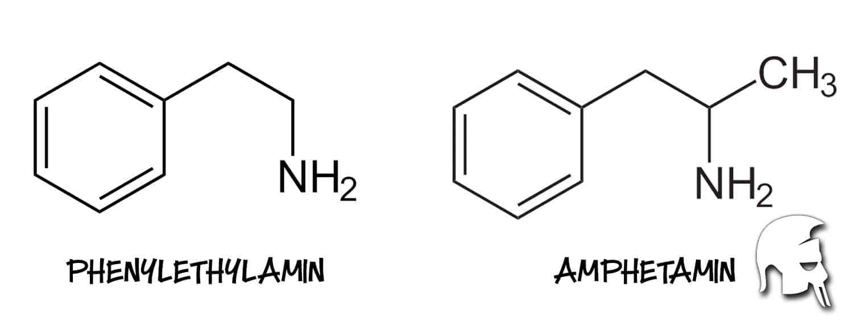 Amphetamin Phenylethylamin