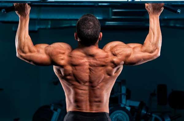 back-training-5-20151222