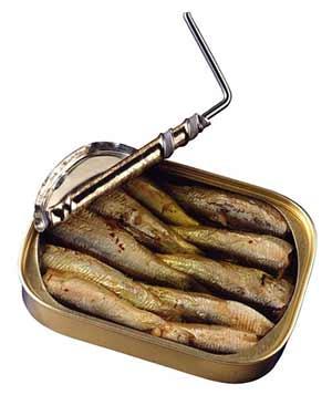 7-lebensmittel-die-deinen-stoffwechsel-beschleunigen-sardinen