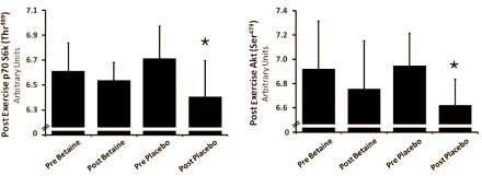 der-anabole-effekt-von-betain-grafik3