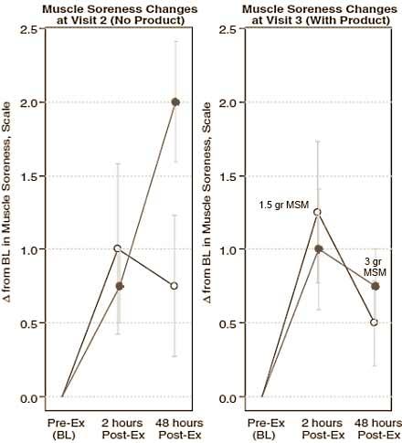 erholung-verbessern-mit-msm-grafik1