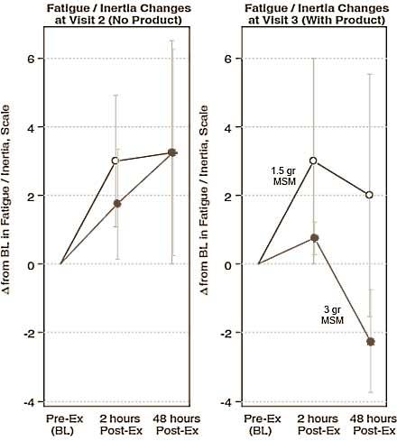 erholung-verbessern-mit-msm-grafik2