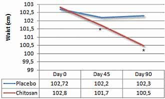 chitosan-der-neue-fatburner-grafik3
