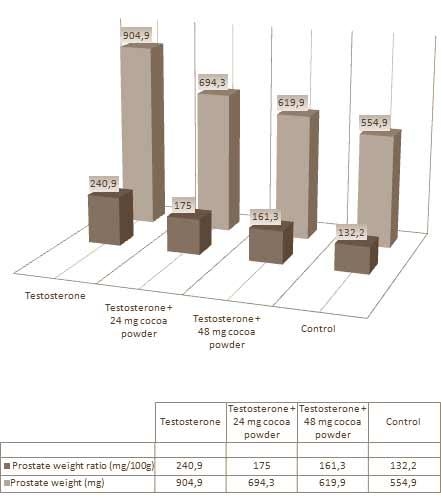 schuetzt-kakao-die-prostata-bei-steroidkonsum-grafik2