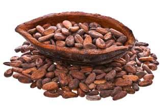 schuetzt-kakao-die-prostata-bei-steroidkonsum-kakao