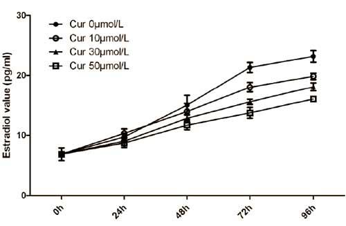 curcumin-gegen-hohen-oestrogenspiegel-grafik2