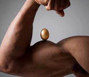 3-eier-pro-tag-gesund-oder-nicht-bild1