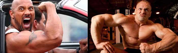 welche steroide gibt es
