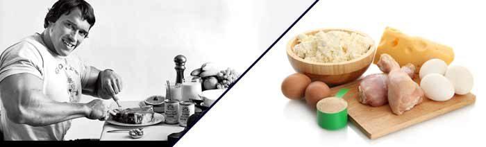 Wie viel protein kann pro mahlzeit absorbiert werden for Psychologie nc liste