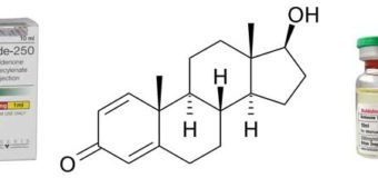 wirkt-sich-boldenon-negativ-auf-die-leber-aus