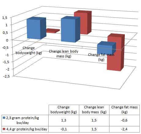 extremer-proteinkonsum-fuehrt-zu-fettverlust-grafik1