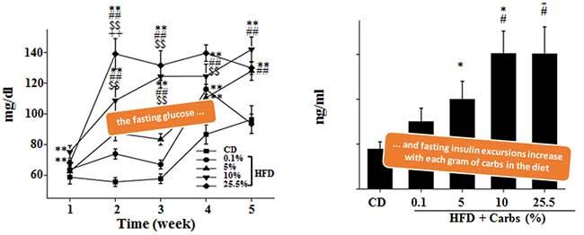 Blutzucker- und Insulinwerte im gefasteten Zustand (links); Kohlenhydrate verschlimmern die Effekte einer High Fat Ernährung