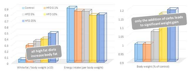 Weißes Körperfett (x10) und Energieaufnahme (kcal) in Relation zum Körpergewicht (links); Kö
