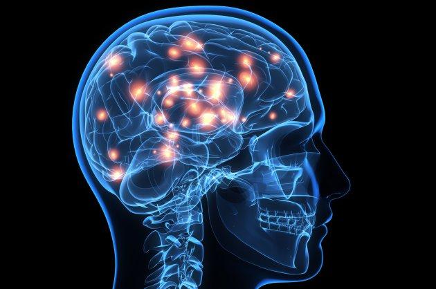 Tyrosin und die Auswirkungen auf unser Gedächtnis