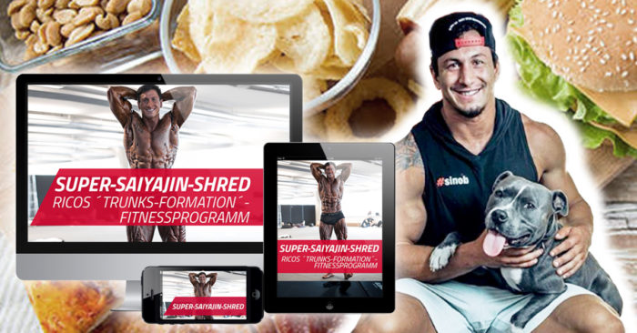 eigenes-fitnessprogramm-von-rico-lopez-gomez-1