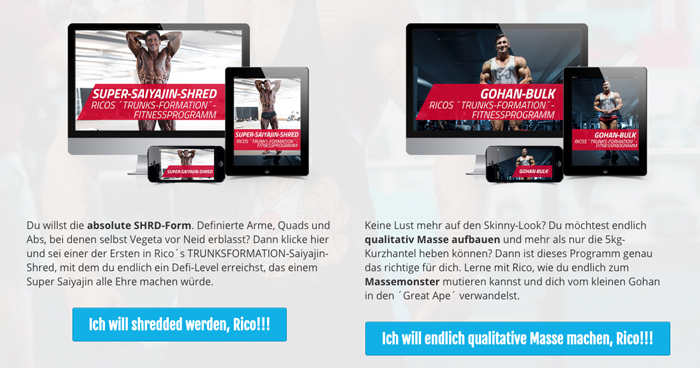 eigenes-fitnessprogramm-von-rico-lopez-gomez