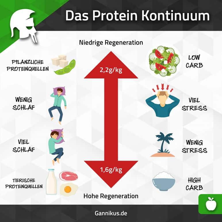 Protein menge Muskelaufbau