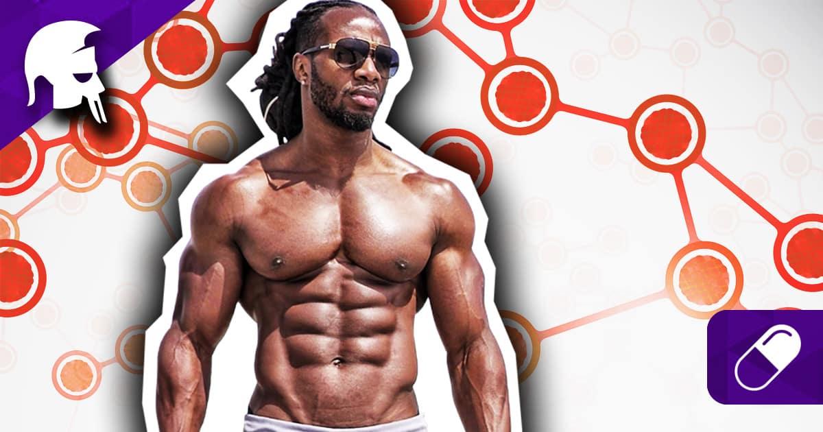 Studien Muskelaufbau