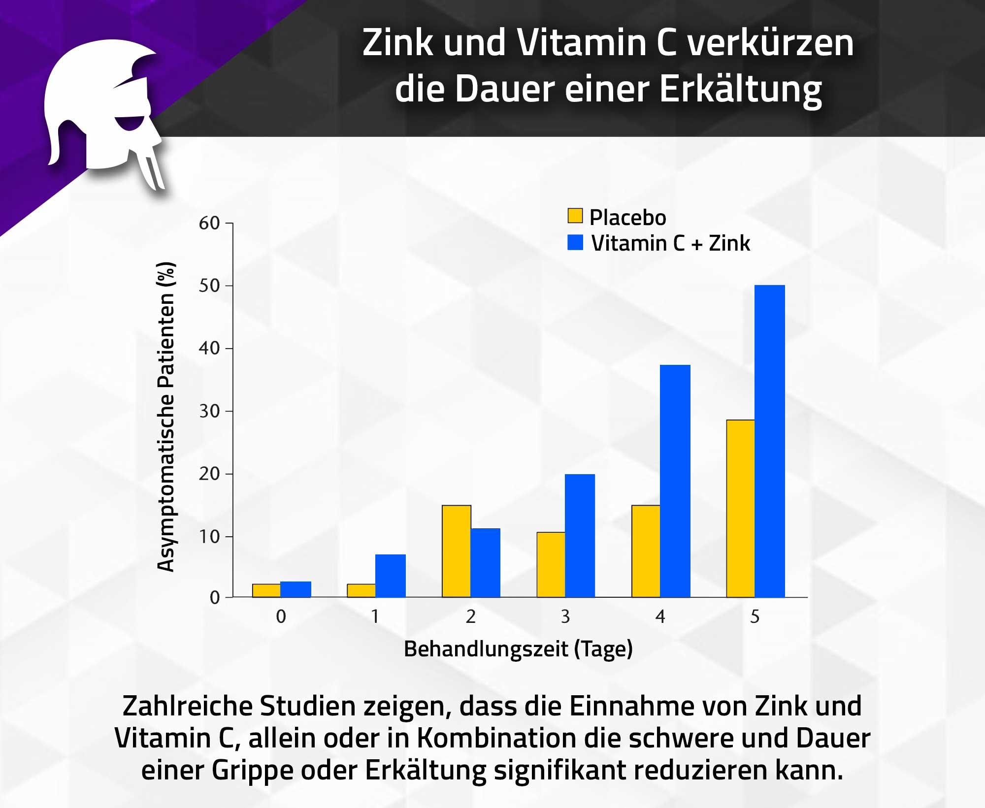 Zink Immunsystem