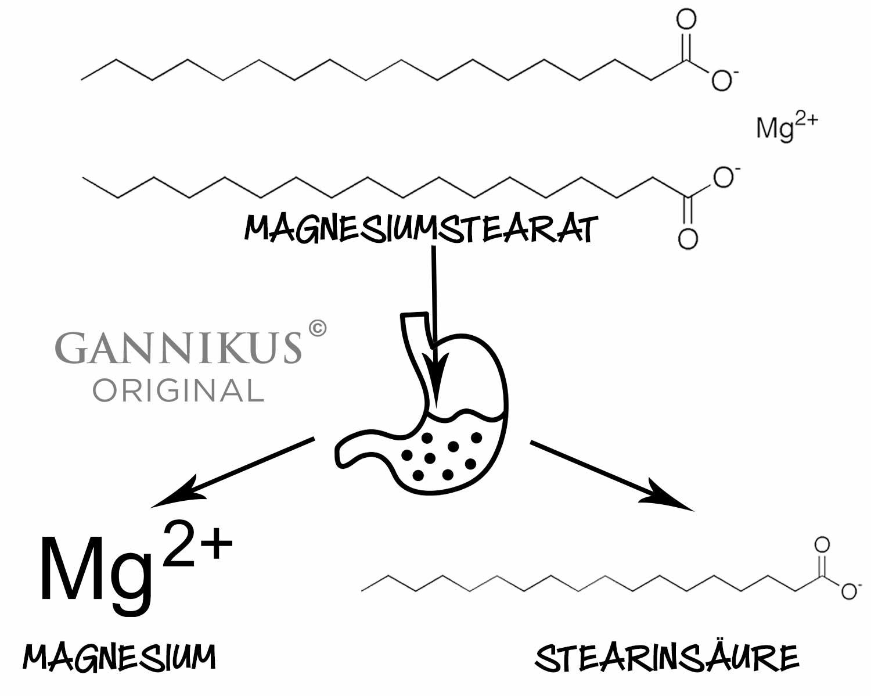 Magnesiumstearat Verdauung