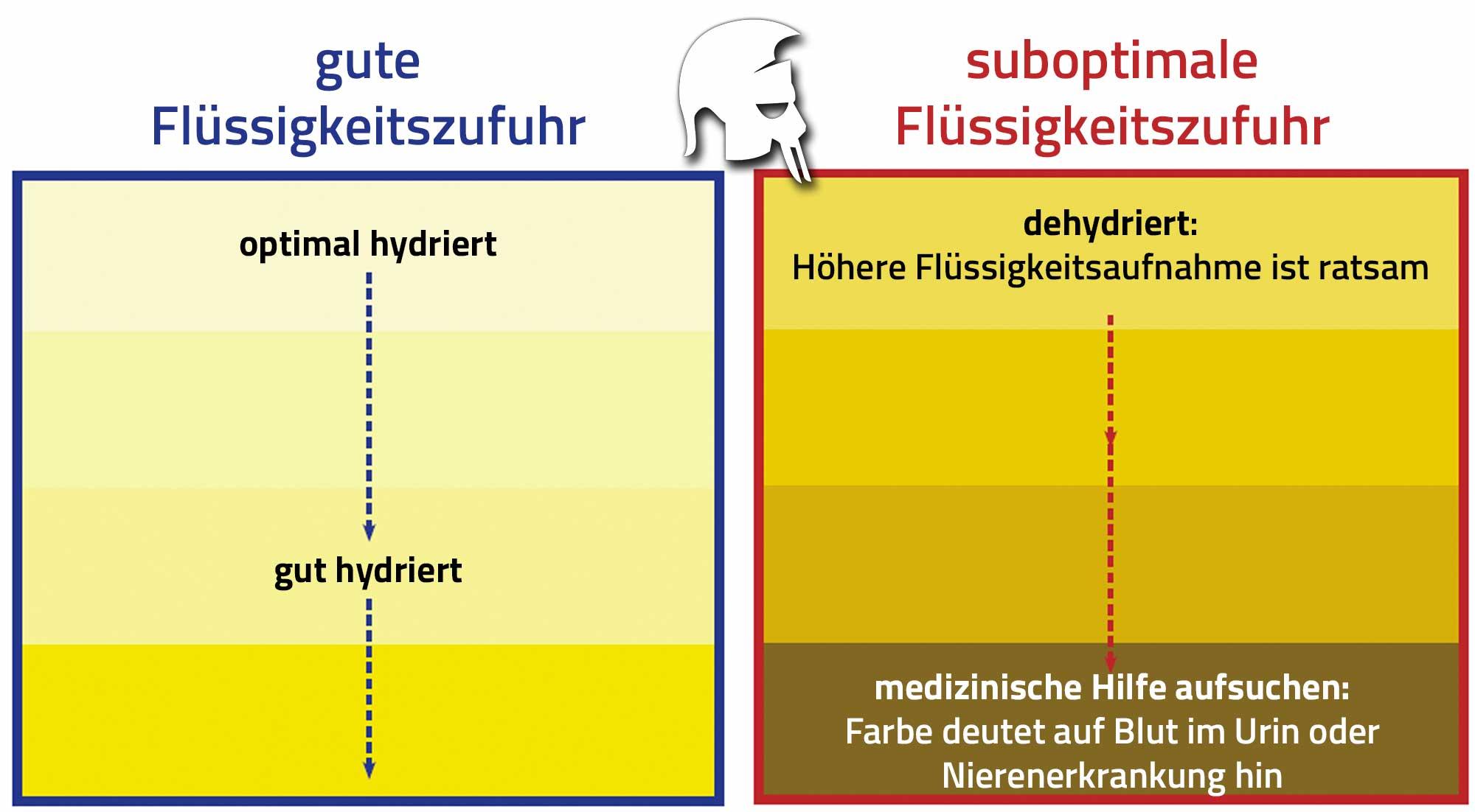 Flüssigkeitszufuhr Urin Farbe