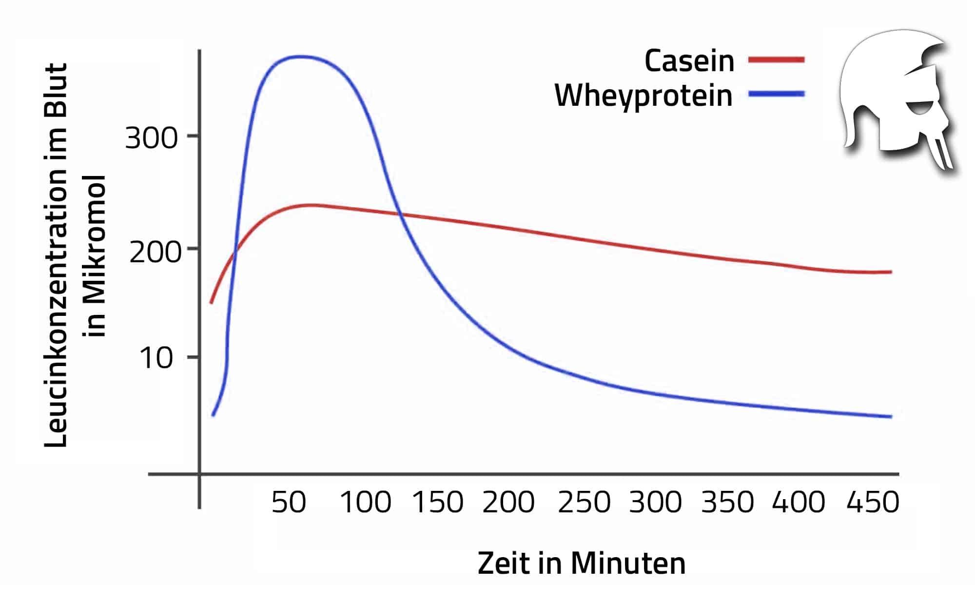 Herstellung Whey Protein