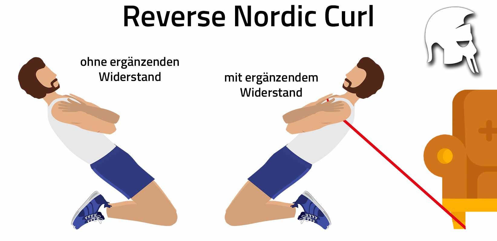 Beintraining zu Hause Reverse Nordic Curl
